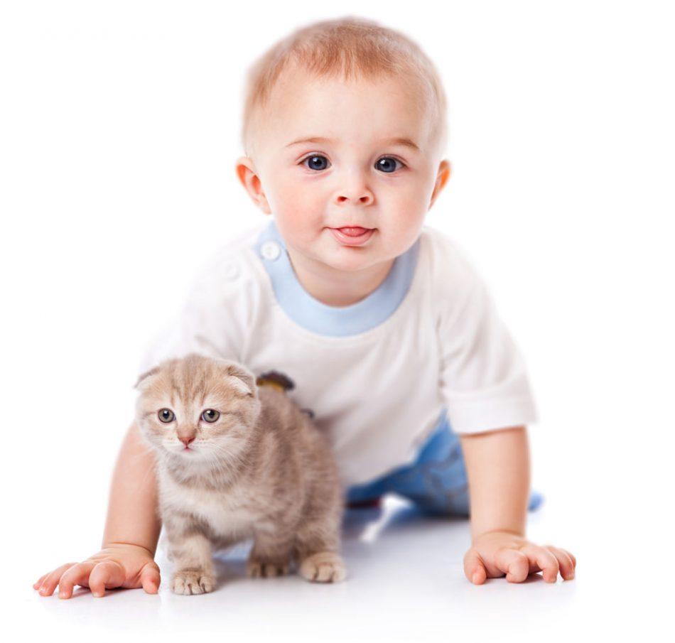 Çocuklara Hayvan Sevgisi Aşılama